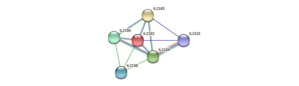 IL2182 protein (Idiomarina loihiensis) - STRING interaction network