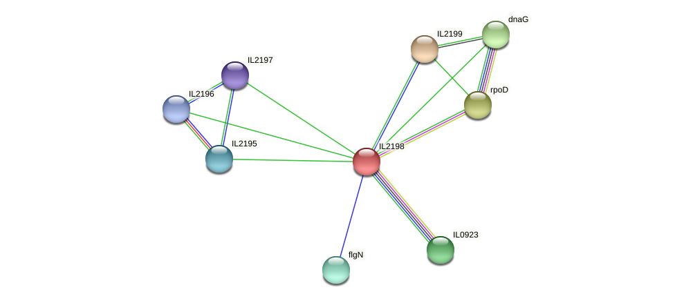 IL2198 protein (Idiomarina loihiensis) - STRING interaction network