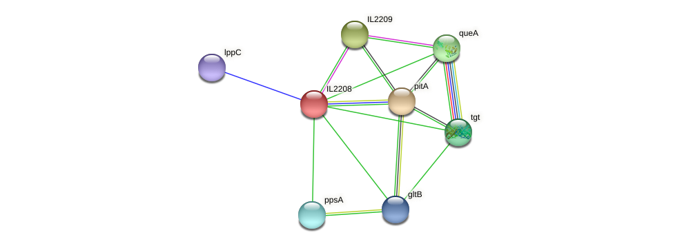 IL2208 protein (Idiomarina loihiensis) - STRING interaction network