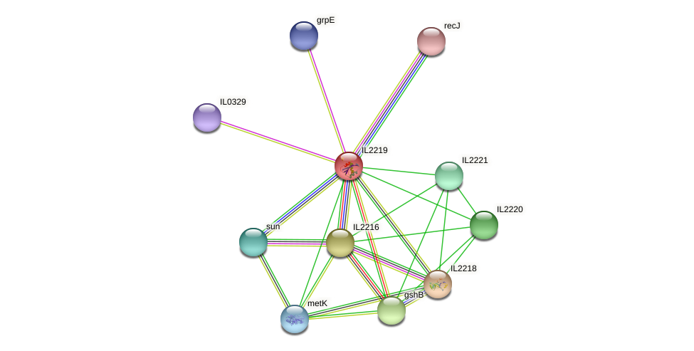 IL2219 protein (Idiomarina loihiensis) - STRING interaction network