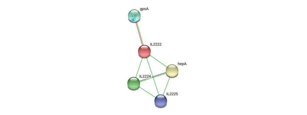 IL2222 protein (Idiomarina loihiensis) - STRING interaction network
