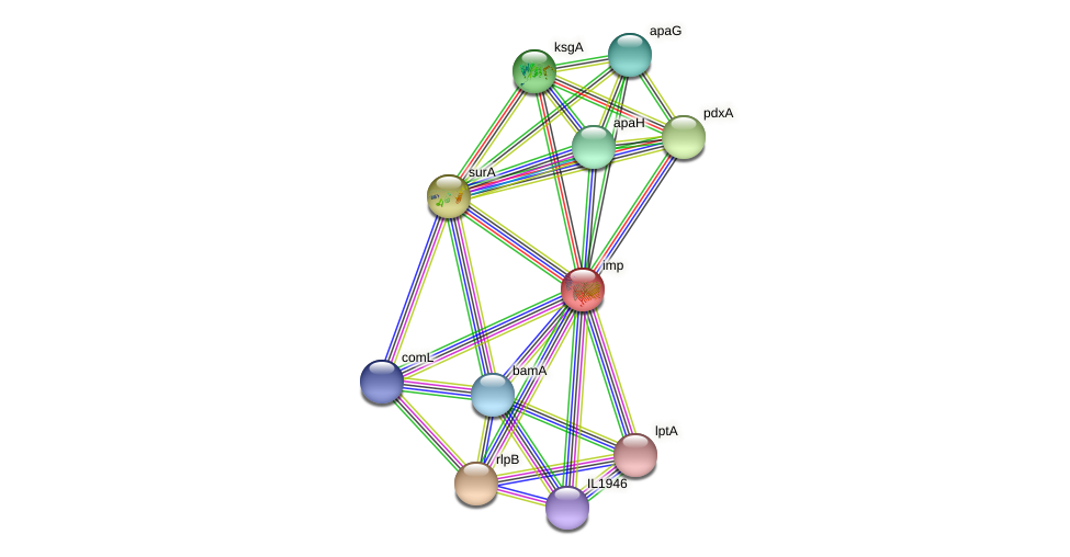lptD protein (Idiomarina loihiensis) - STRING interaction network