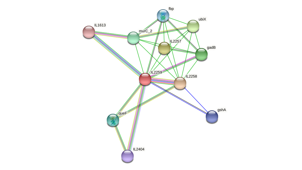 IL2259 protein (Idiomarina loihiensis) - STRING interaction network