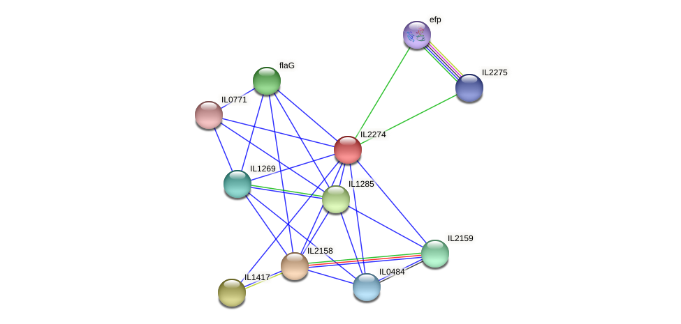 IL2274 protein (Idiomarina loihiensis) - STRING interaction network