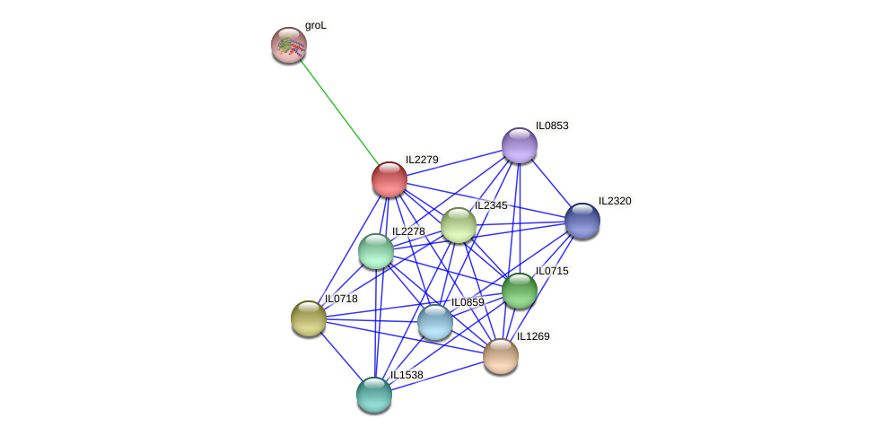 IL2279 protein (Idiomarina loihiensis) - STRING interaction network
