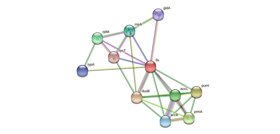 fis protein (Idiomarina loihiensis) - STRING interaction network