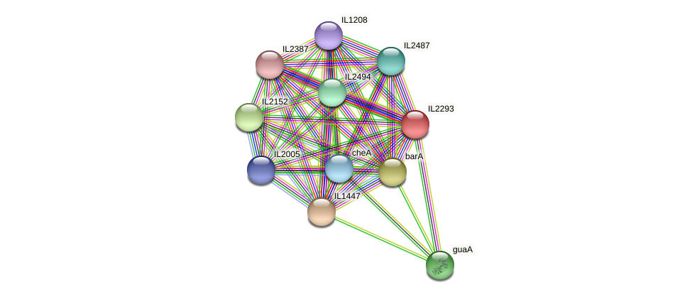 IL2293 protein (Idiomarina loihiensis) - STRING interaction network