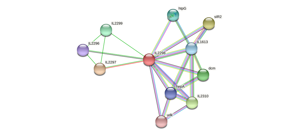 IL2298 protein (Idiomarina loihiensis) - STRING interaction network