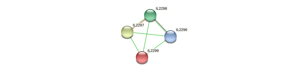 IL2299 protein (Idiomarina loihiensis) - STRING interaction network