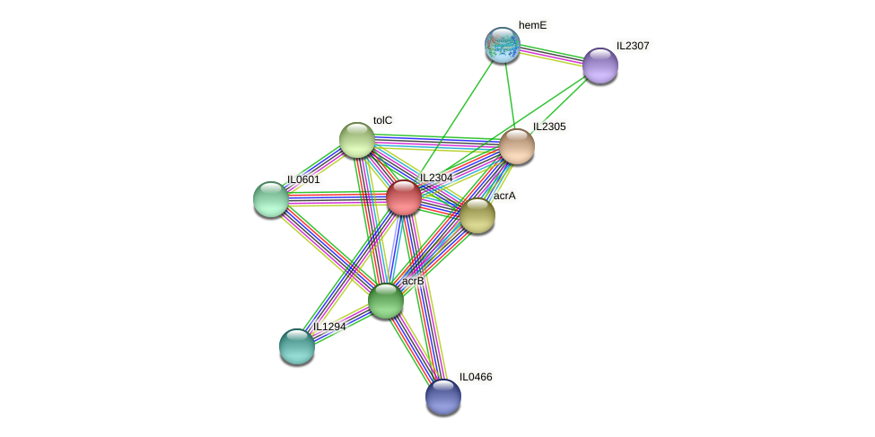 IL2304 protein (Idiomarina loihiensis) - STRING interaction network