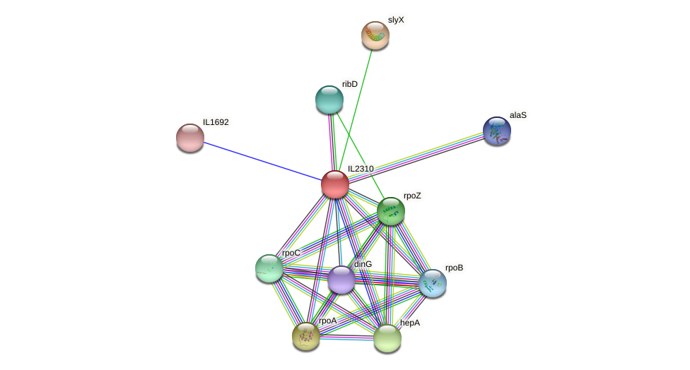 IL2310 protein (Idiomarina loihiensis) - STRING interaction network