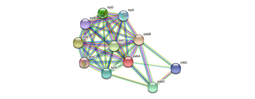 pabA protein (Idiomarina loihiensis) - STRING interaction network