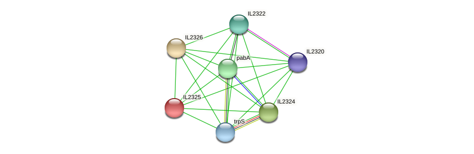 IL2325 protein (Idiomarina loihiensis) - STRING interaction network