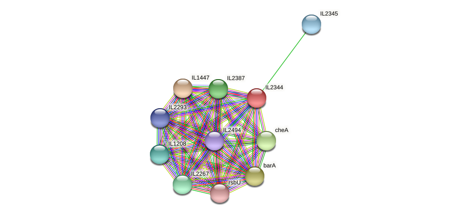 IL2344 protein (Idiomarina loihiensis) - STRING interaction network