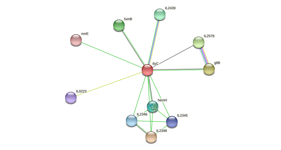 tlyC protein (Idiomarina loihiensis) - STRING interaction network