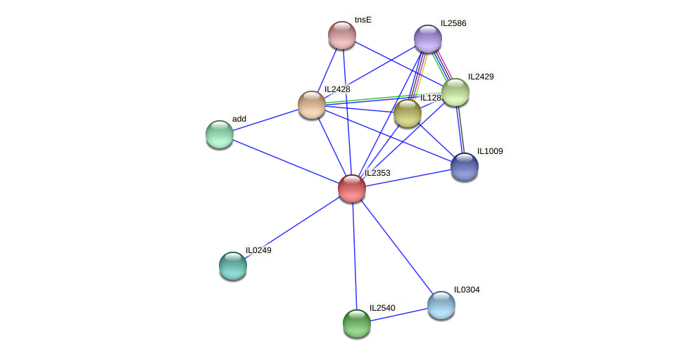 IL2353 protein (Idiomarina loihiensis) - STRING interaction network