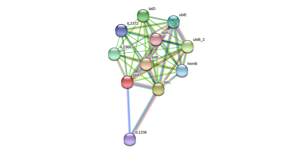 IL2370 protein (Idiomarina loihiensis) - STRING interaction network