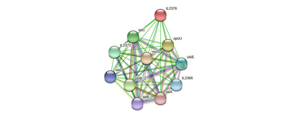 IL2376 protein (Idiomarina loihiensis) - STRING interaction network