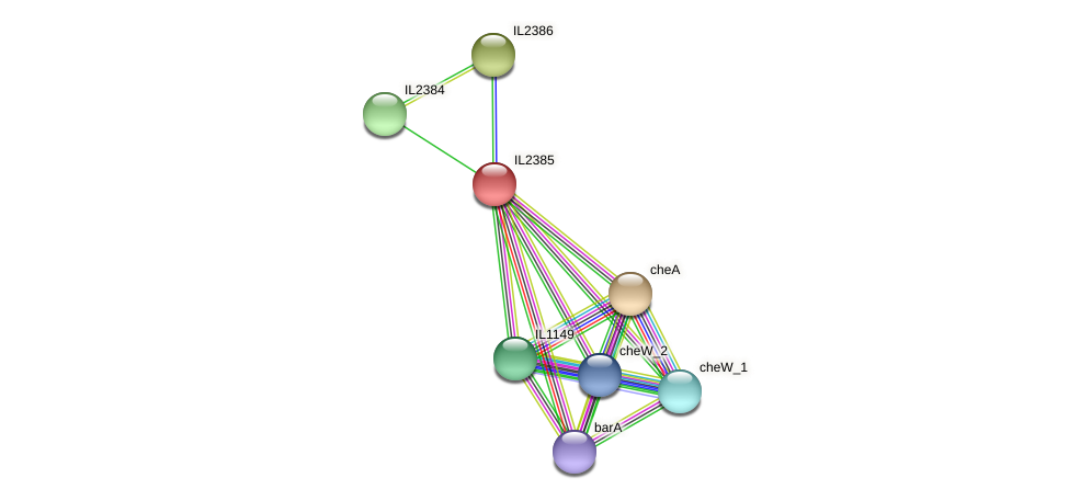 IL2385 protein (Idiomarina loihiensis) - STRING interaction network