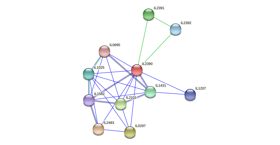 IL2390 protein (Idiomarina loihiensis) - STRING interaction network