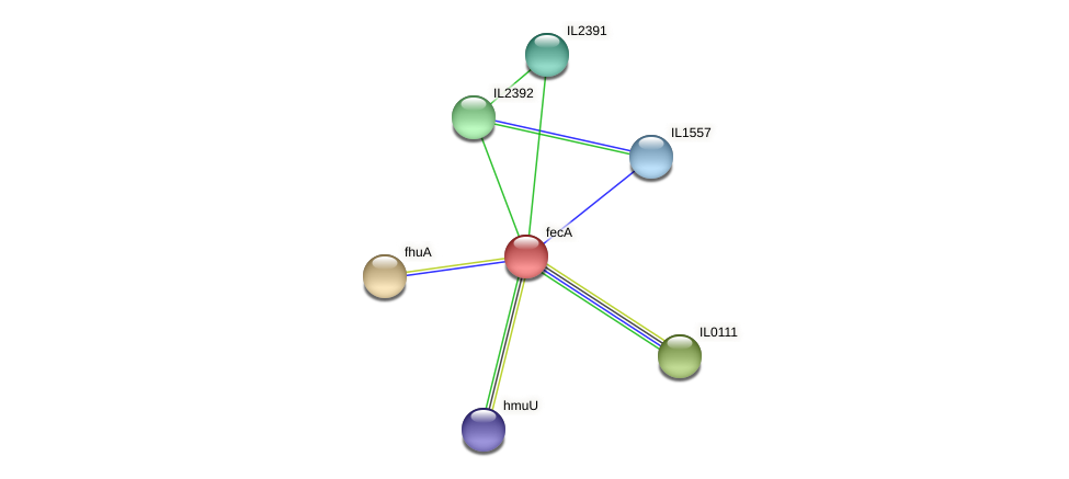 fecA protein (Idiomarina loihiensis) - STRING interaction network