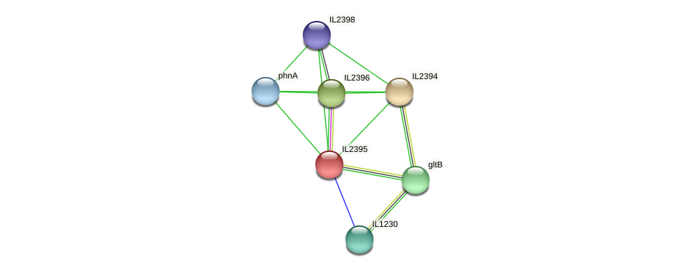 IL2395 protein (Idiomarina loihiensis) - STRING interaction network