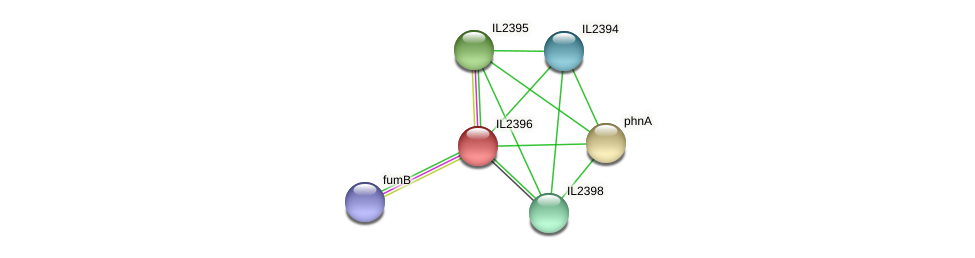 IL2396 protein (Idiomarina loihiensis) - STRING interaction network