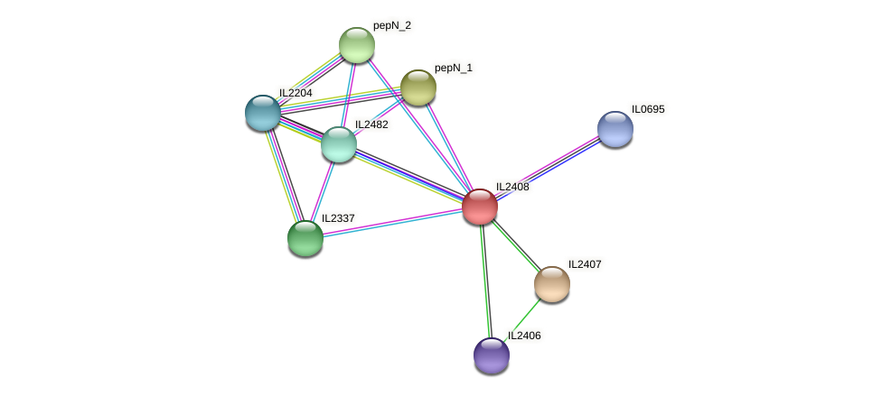 IL2408 protein (Idiomarina loihiensis) - STRING interaction network