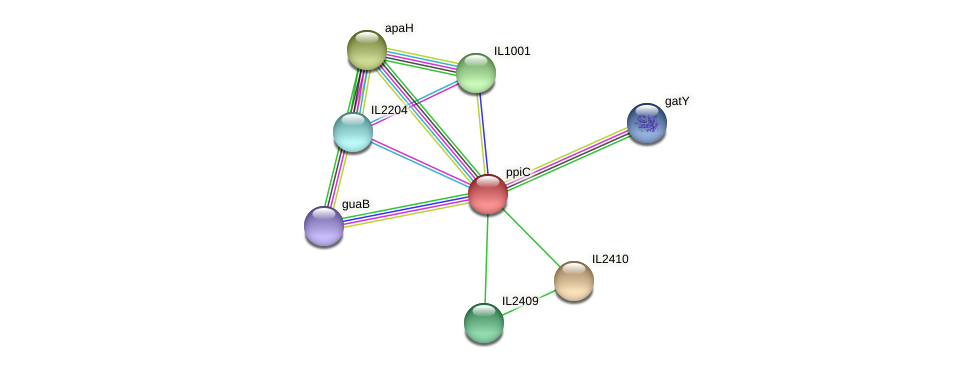 ppiC protein (Idiomarina loihiensis) - STRING interaction network