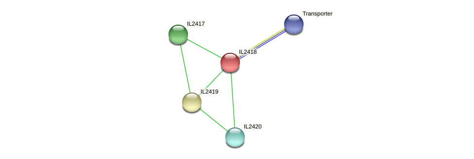 IL2418 protein (Idiomarina loihiensis) - STRING interaction network