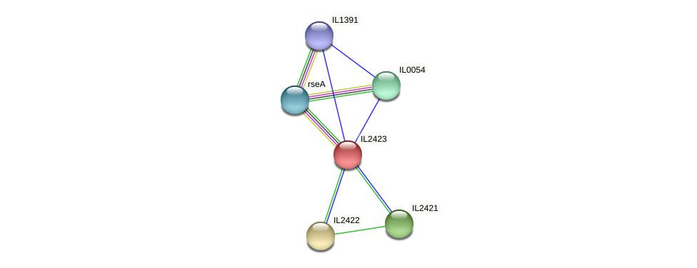 IL2423 protein (Idiomarina loihiensis) - STRING interaction network