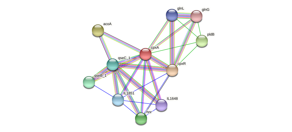 cpxA protein (Idiomarina loihiensis) - STRING interaction network