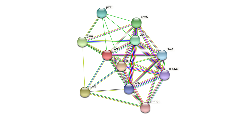 glnG protein (Idiomarina loihiensis) - STRING interaction network