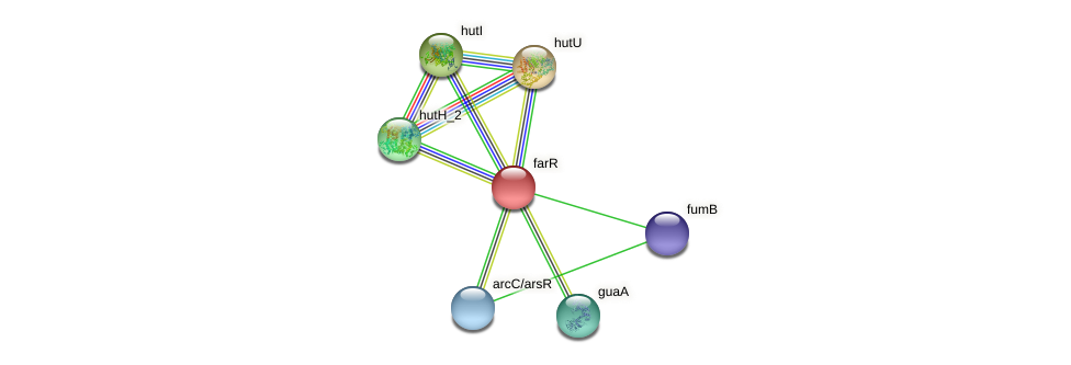farR protein (Idiomarina loihiensis) - STRING interaction network