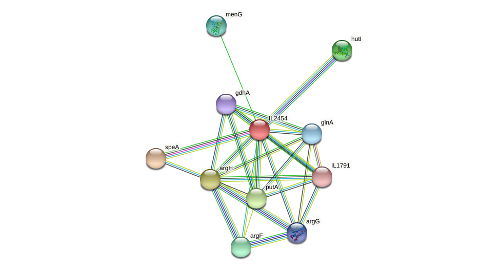 IL2454 protein (Idiomarina loihiensis) - STRING interaction network