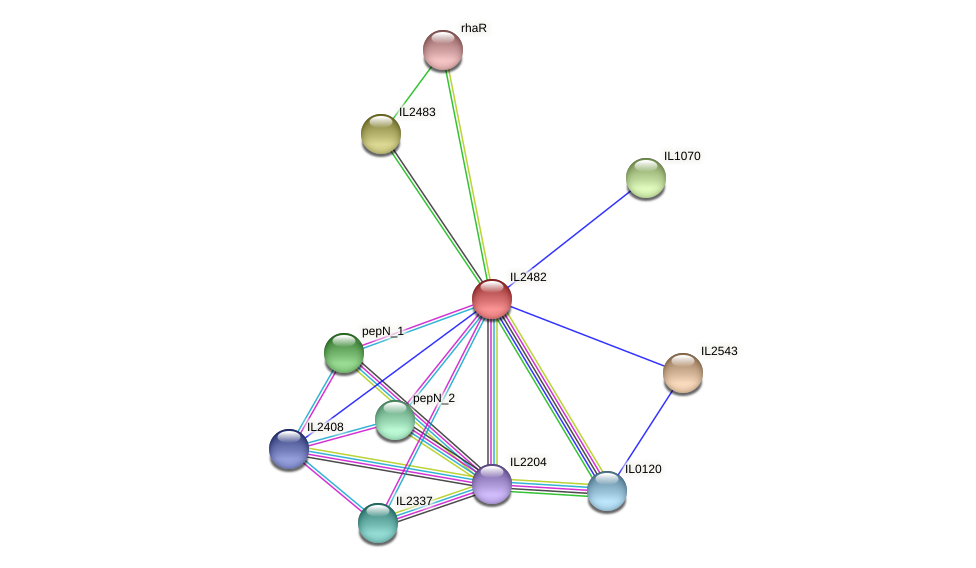 IL2482 protein (Idiomarina loihiensis) - STRING interaction network