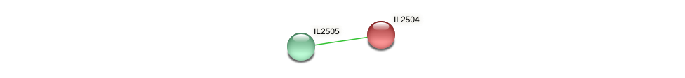 IL2504 protein (Idiomarina loihiensis) - STRING interaction network
