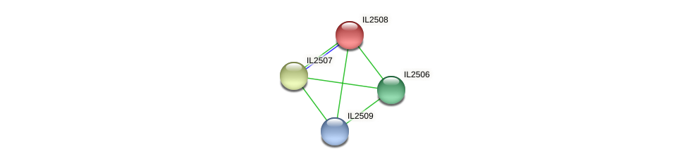 IL2508 protein (Idiomarina loihiensis) - STRING interaction network