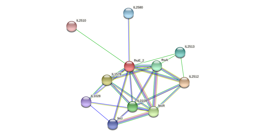 IL2511 protein (Idiomarina loihiensis) - STRING interaction network