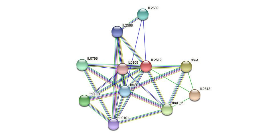 IL2512 protein (Idiomarina loihiensis) - STRING interaction network