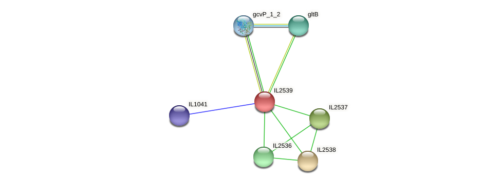 IL2539 protein (Idiomarina loihiensis) - STRING interaction network