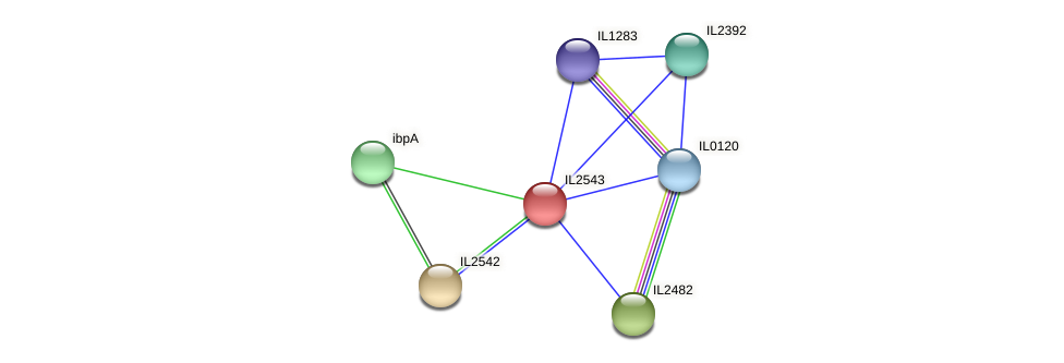 IL2543 protein (Idiomarina loihiensis) - STRING interaction network