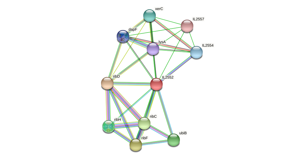 IL2552 protein (Idiomarina loihiensis) - STRING interaction network
