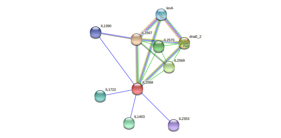 IL2568 protein (Idiomarina loihiensis) - STRING interaction network