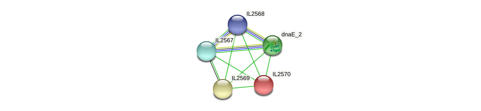 IL2570 protein (Idiomarina loihiensis) - STRING interaction network