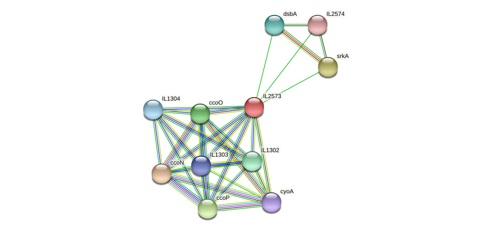 IL2573 protein (Idiomarina loihiensis) - STRING interaction network