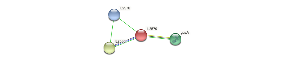 IL2579 protein (Idiomarina loihiensis) - STRING interaction network