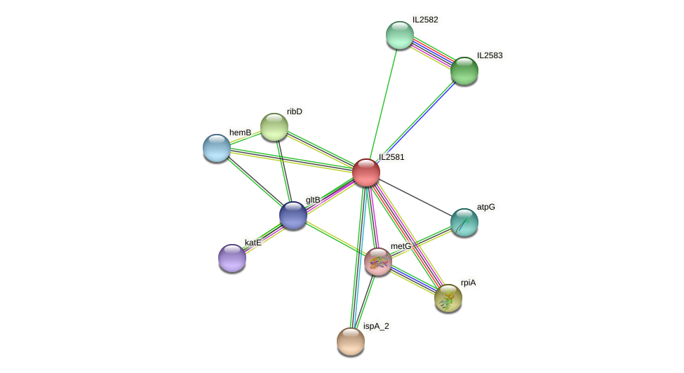 IL2581 protein (Idiomarina loihiensis) - STRING interaction network