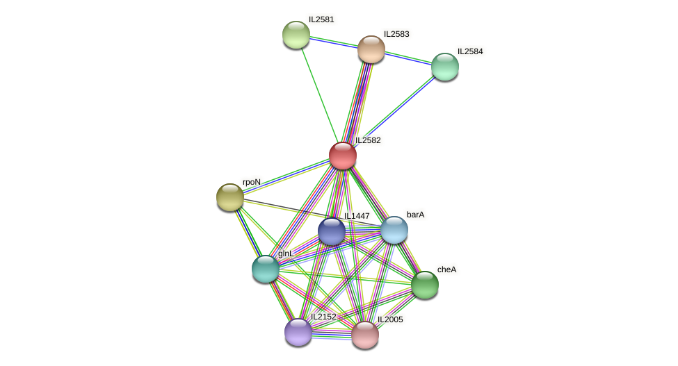 IL2582 protein (Idiomarina loihiensis) - STRING interaction network
