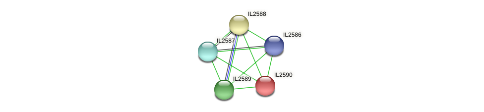 IL2590 protein (Idiomarina loihiensis) - STRING interaction network